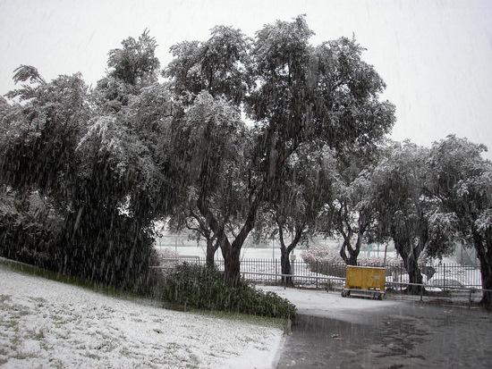 שלג בירושלים - 0